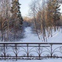 На мосту. :: Сергей Залаутдинов