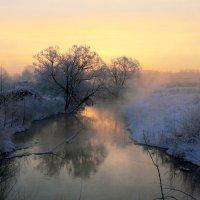 У теплой речки по утрам... :: Юрий Морозов
