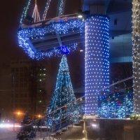 Новогоднее настроение :: Микто (Mikto) Михаил Носков