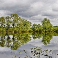 Весеннее  отражение. :: Валера39 Василевский.