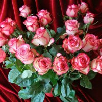 Розы. :: Larisa Simonenkova