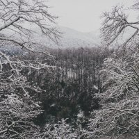 Снежка насыпало :: Иван Евгеньев