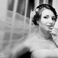 Утро невесты :: Светлана Гребцова