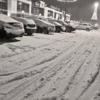 Снег! :: Екатерина Т.