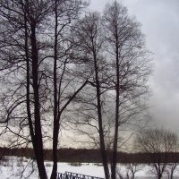 IMG_0111 - Канун Старого Нового года :: Андрей Лукьянов