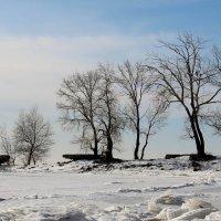 Мороз :: Dr. Olver  ( ОлегЪ )