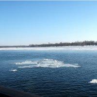 Оттепель в январе... :: Тамара (st.tamara)