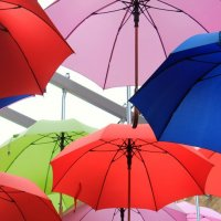 нам не страшен дождь:-) :: Olga