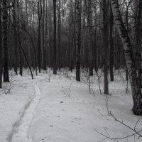 Img_0259б - Продолжаю учиться снимать не цветное :: Андрей Лукьянов