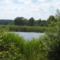 """Заповедная зона """"Голубые озера"""" :: Саша Коломийчук"""
