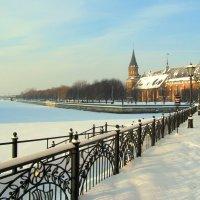 Скованная льдом :: Сергей Карачин