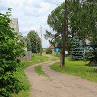 А в деревне июнь :: Татьяна Ломтева