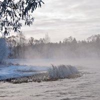 ранние холода :: Galina