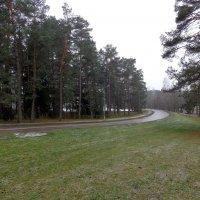 Зима,15 января :: rimgis