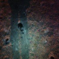 Топ, топ...зимний ночной тротуар... :: Ольга Кривых