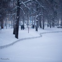 Зима 2015 :: Янгиров Амир Вараевич