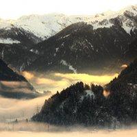 Туман. :: Людмила Шнайдер