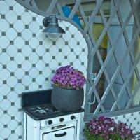 на Одесской кухне :: Petr Popov