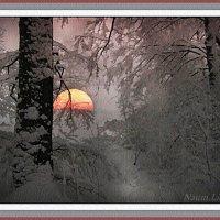 Таинственный вечер в зимнем лесу :: Лидия (naum.lidiya)