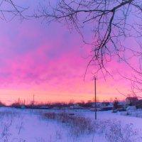 Зимнее утро :: Анна Никонорова