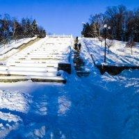 Морозное 31 декабря в Харькове :: Александр Сальтевский
