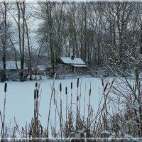 Однажды зимой. :: Святец Вячеслав