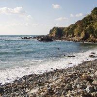 На Японском море :: Slava Hamamoto