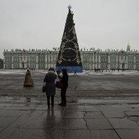 После Нового Года....... :: Владимир Питерский