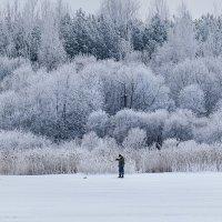 Одинокий рыбак на Шумилинском озере. :: Анатолий Клепешнёв