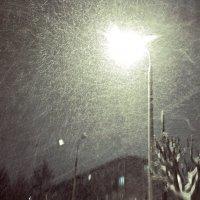 Снегопад :: Ксения -