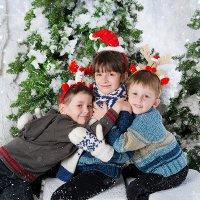 Братья и сестричка :: Светлана Сушинских