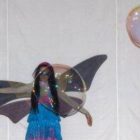 Шоу мыльных пузырей... :: Олег Петрушин