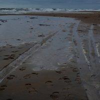 Следы на песке :: Дмитрий Близнюченко