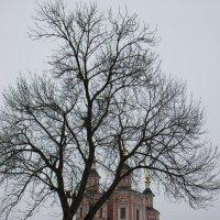 Свенский монастырь :: Елена Миронова