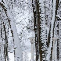 в старом парке после снегопада :: Galina