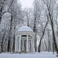 беседка в парке :: Galina