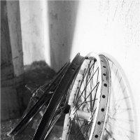 колёса.. :: Марина Буренкова