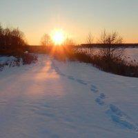 Лучи солнца золотые, землю нашу согревают.......... :: Hаталья Беклова
