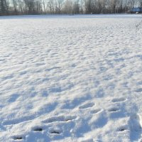Зима :: ludmila Varum