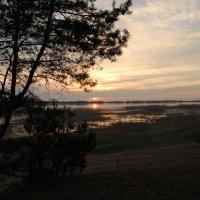 Закат Солнца над Чудским озером :: Алексей К