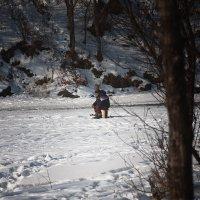 Одинокий рыбак :: Сергей