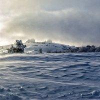 снежные дюны :: Варвара
