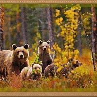 Веселая семейка :: Лидия (naum.lidiya)