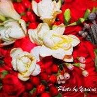 цветут цветы :: Yana Odintsova