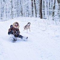 Бабушка с внуком  VS  Локи пёс ... :: Lena Ivanova