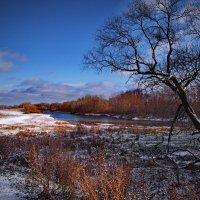 Зима ранняя . :: Александр Макурин