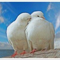 Любовь и преданность :: Лидия (naum.lidiya)