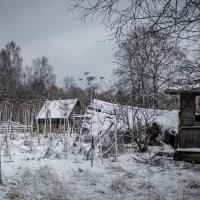 Январь...пасмурно :: Людмила Комарова