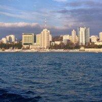 Морская прогулка 17 января 2015. СОЧИ :: Tata Wolf