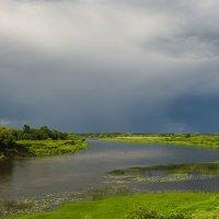 Летняя река :: Валентин Котляров